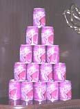 Bevanda di Roselle