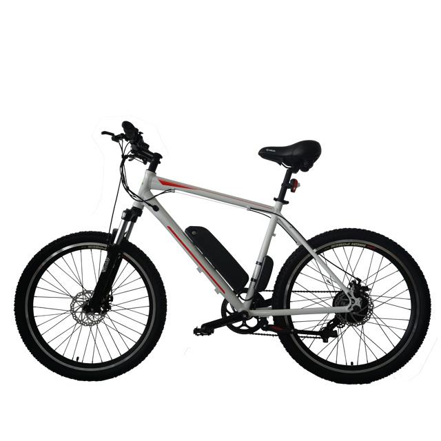 Fantas-Bike City-Hunter005 Электрический велосипед