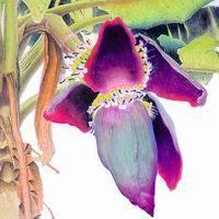Artefact de soie (fleur) - 3