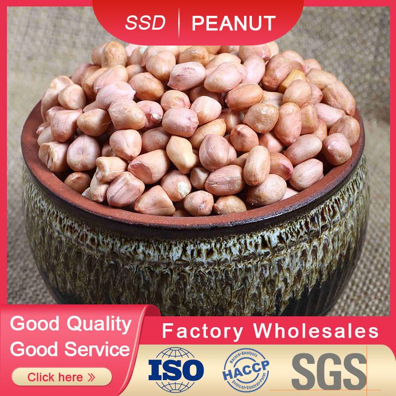 Nocciolo grezzo dell'arachide raccolto della Cina della provincia di Shandong dal nuovo