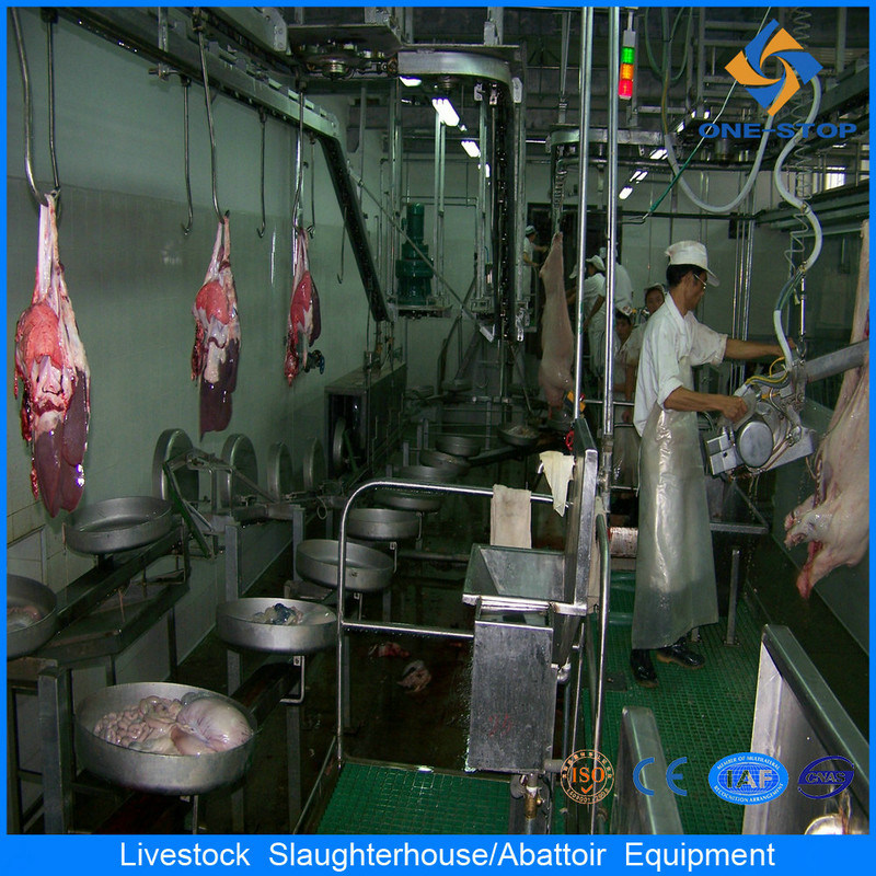 Matériel d'abattoir pour abattoir de cochon