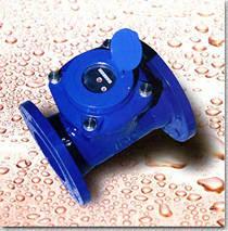 Entfernbares Element Woltman kaltes (heißes) Wasser-Messinstrument
