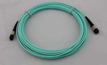A MPO / Patchcord MTP