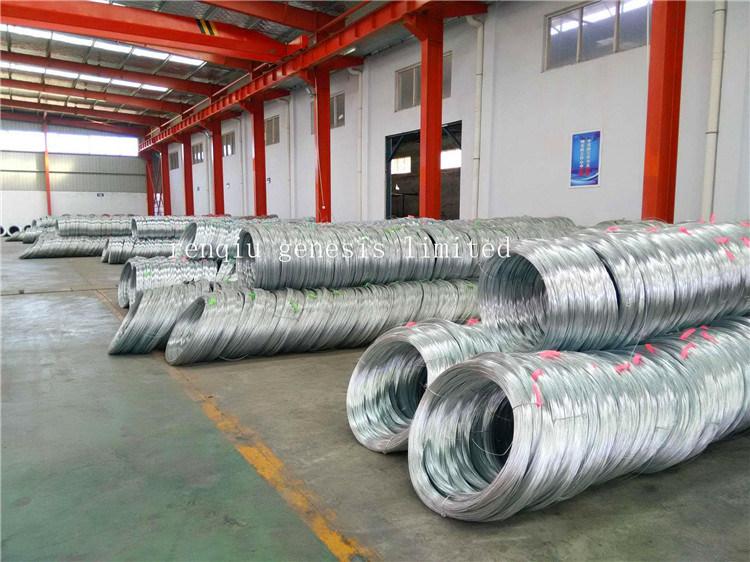 filo di acciaio galvanizzato del TUFFO caldo di 6.0mm - di 1.0mm