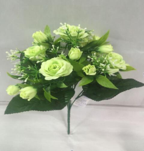 Aftical Blume