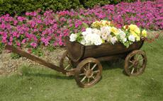Canhão de flores-05101 HT