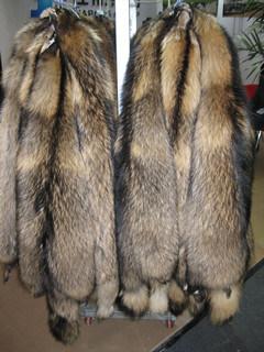 アライグマ犬の毛皮の毛皮