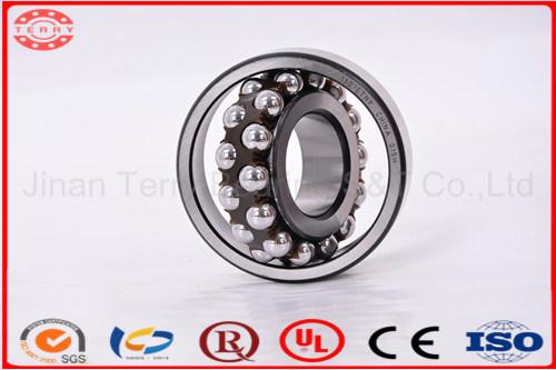 Teh de haute qualité, prix d'usine le roulement à billes à rotule (2209ATN)