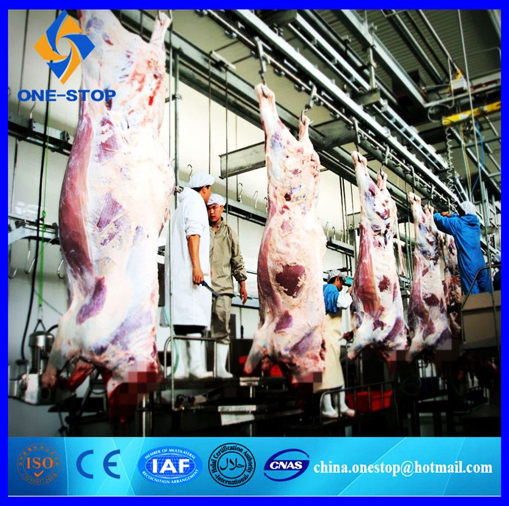 Mucca Slaughter Assembly Line/Halal Abattoir Equipment Machinery per Beef Steak Slice Chops