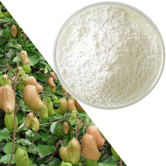 Le Griffonia Simplicifolia Seed Extract 5-Htp Poudre