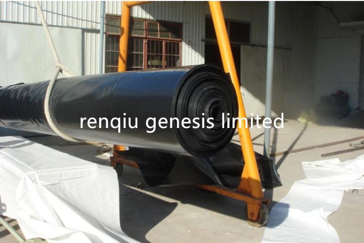 1.5mm 2.0mm Stärke mit hoher Schreibdichte Polyetheleene Geomembrane Teich-Zwischenlage-Aufschüttung HDPE Geomembrane