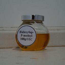 Haloxyfop-R-Methyl-