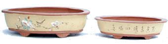 Pots de Bonsai