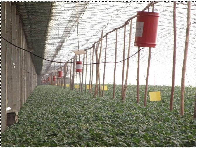 Alle Produkte Zur Verfugung Gestellt Vonbeijing Aigeng Agri