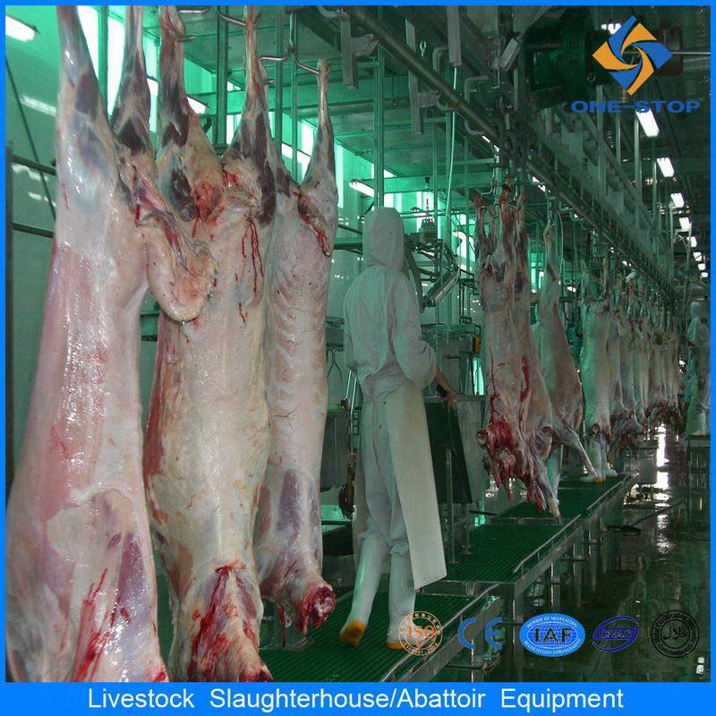 Le pecore macellano la linea di trasformazione strumentazione di macellazione della capra