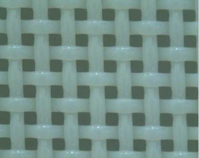 Ponto de tafetá Tecido de poliéster para a Fábrica de Papel (12502/06702)