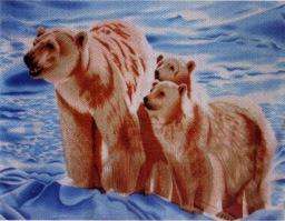 Polar Fleece ブランケット