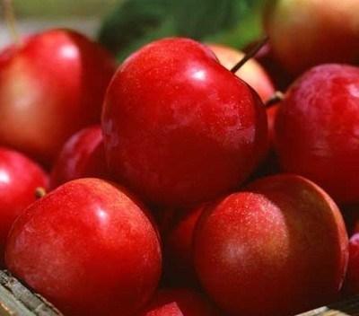 En Polvo Extracto de cáscara de manzana
