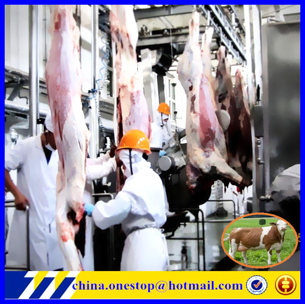 Linea di produzione riga trattata del macello delle macchine del macello della Camera di macello/degli impianti bestiame di Halal