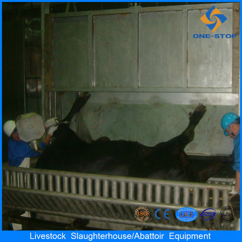 Ce Cattle Halal Slaughtering Line con Abattoir Machines