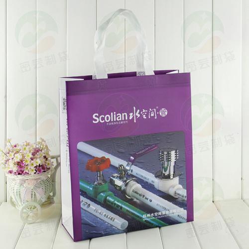 Le sac d'emballage non tissé avec le revêtement PS 3D peut contenir 20 kg (MYC-032)