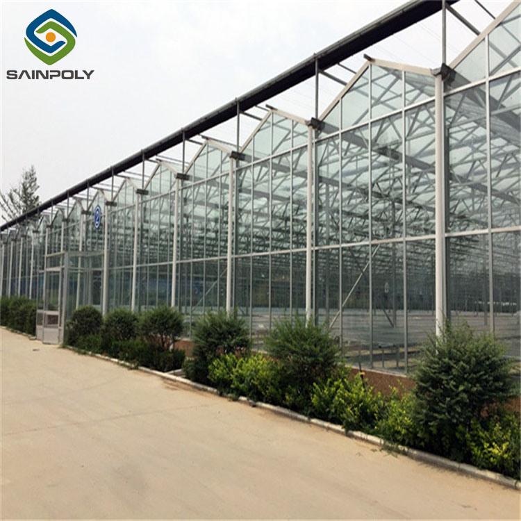 [سينبولي] زراعيّة زجاجيّة دفيئة زراعة فوق الماء مزرعة