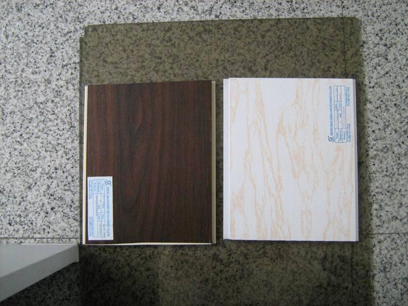 PVC-Decke (01)