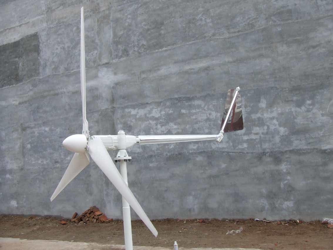 De Turbine van de wind (1000W)