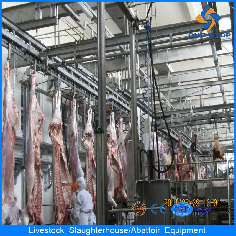 Strumentazione di macello del bestiame di Halal con 50 teste/giorno