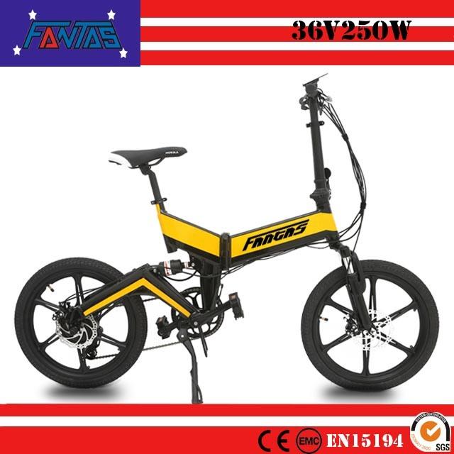 Bici a buon mercato elettrica dei Vichinghi 002 della Fantas-Bici