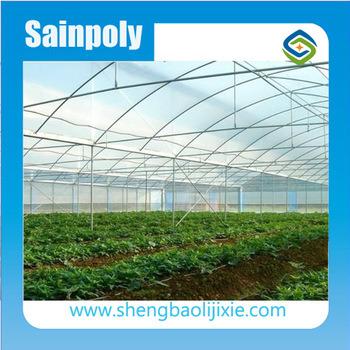 Cheapest Hot Sale/commerciales agricoles Sainpoly serre plastique