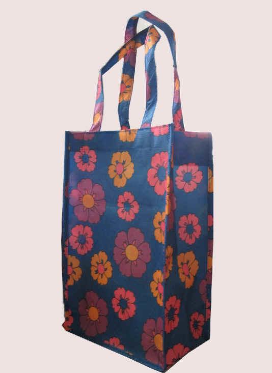Einkaufstasche (IMG_3366)