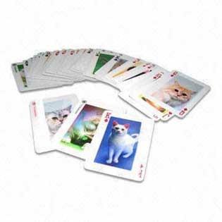 서류상 카드