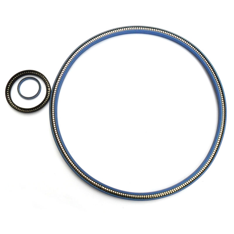 Spring Energized Seals (PTA, PTB)