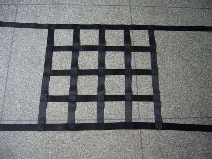 Het Net van de veiligheid