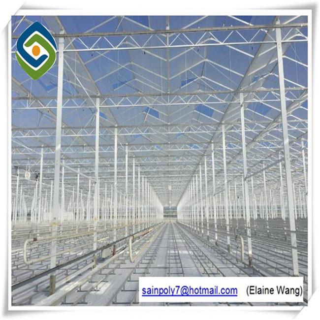 Коммерческие системы гидропоники стекла выбросов парниковых газов для помидора