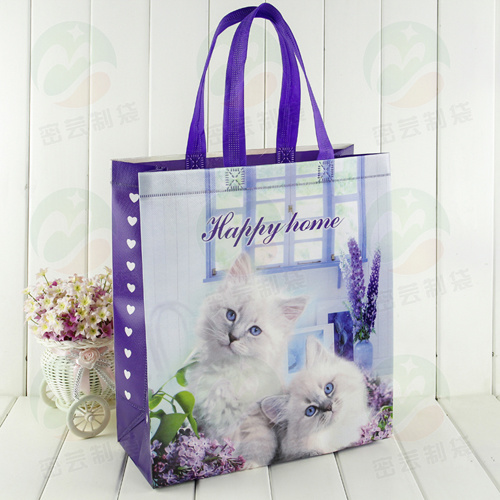 Non Woven Shopping Bag con 3D Customised Print (MY-027)