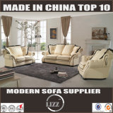 Contemporary Modern Leather Sofa (Lz1788)