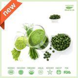 100% Natural Organic Wheat Grass Juice Green Powder