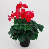 Top Rated Artificial Flower Rose Begonia