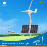 Manufacturer Ce/RoHS/FCC Turbine Blades Wind Solar Hybrid LED Street Light
