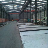 Supper Stainless Steel Hot Rolled/Cold Rolled Roofing Sheet (304 316L 310S 321 317L 347 2201)