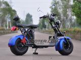 2 Wheel Fat Tire City Coco Motor Coc 1800W Citycoco