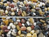 Cheap Large Washed River Pebble Stone
