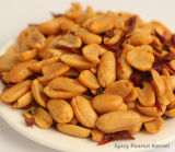 Good Quality Snack Fried Spicy Peanut Kernels
