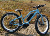 "Hot Selling Gloria 26"" 36V 250W Alloy Fat Electric Bike"