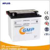 Motorcycle Battery Prices for 12V 28ah Dry Storage Battery Y60-N24L-a
