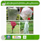 Plant Cover Nonwoven Fabric for Agriculture