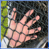 China Supplier Chain Link Fence in High Quality