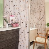 China Decorative Acrylic Panel for Partition Dental Office